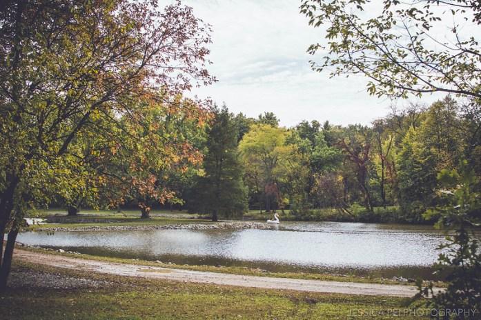 Grant's Farm swan paddleboat fall autumn