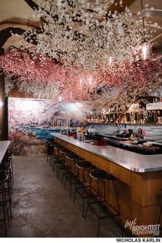 Cherry Blossom Bar-1