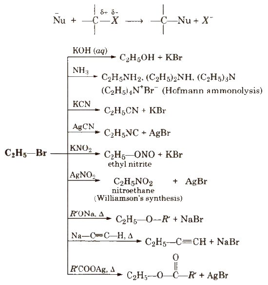 Cbse Class 12 Chemistry Notes Haloalkanes And Haloarenes
