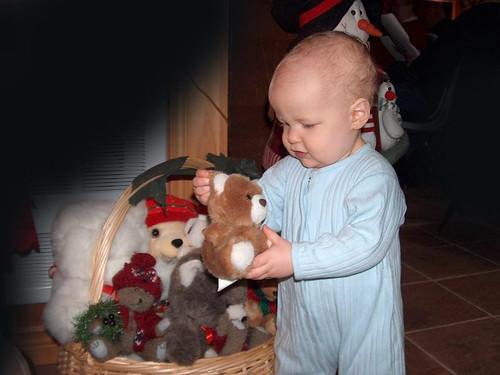 Pretty Teddy Bear