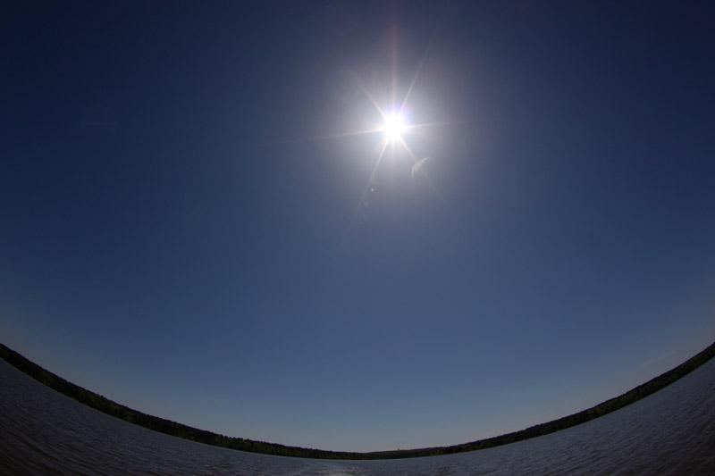 Spotlight Sun