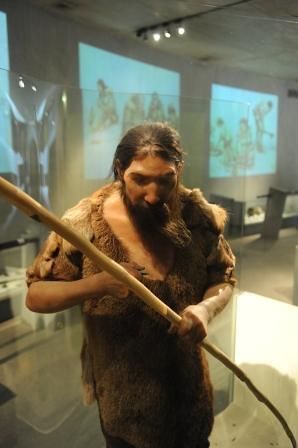 neanderthal 316 lkl