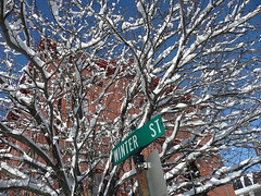 Winter Street in winter