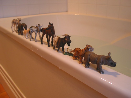 Bathtime Line Up