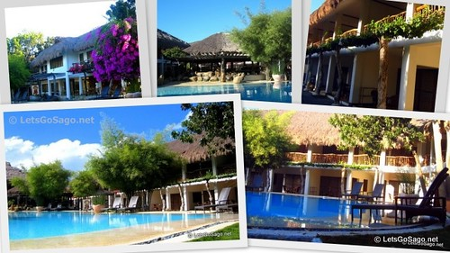 Pool Area & Room Accomodations