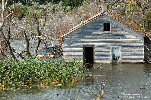 Derelict and swamped farmhouse