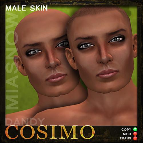 DANDY Avatar Skin