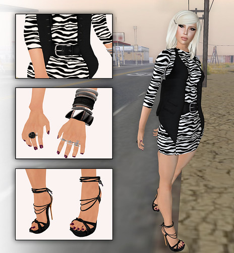 zebra in western look6