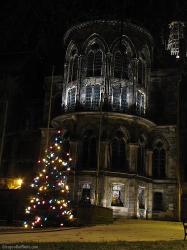 Glasgow University Christmas Tree
