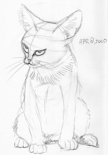 Cute kitten, drawn live on April 8, 2010