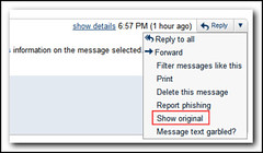 View the message source of a mail received in gmail (by absoblogginlutely)