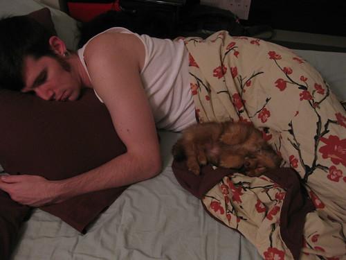 Sleepy Cozies