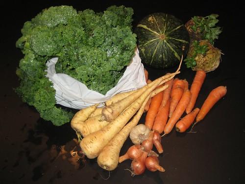 Aardvlo veggiebag week 51