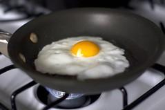 frying an egg