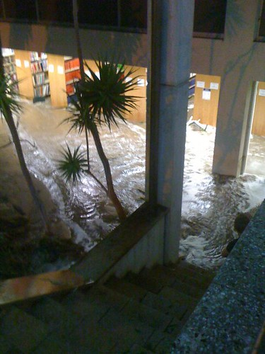 looking down stairs to a flooding library. Books on the lower shelves are underwater.
