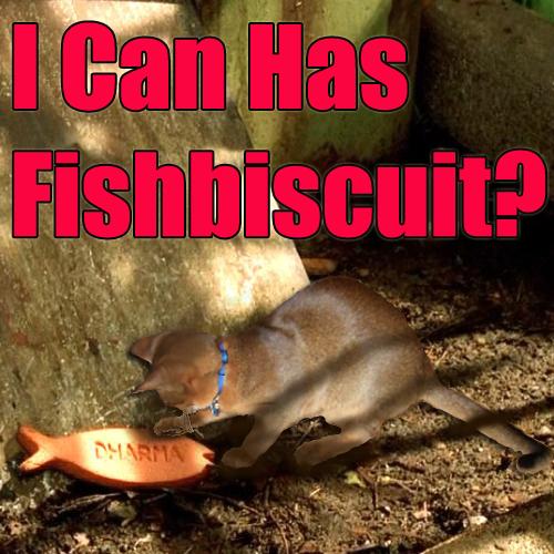 fishbiscuit
