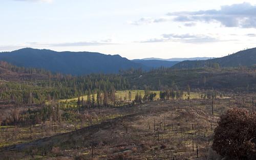Yosemite 120 Fire Recovery