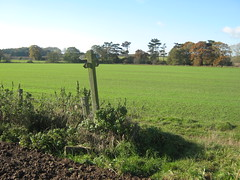 Bonnie Prince Charlie Walk near Hollington, De...