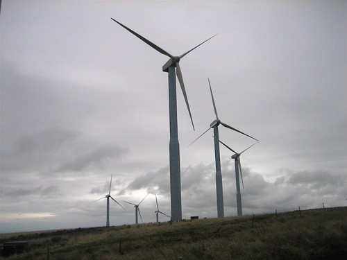 Washington Windmills