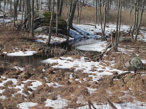 Upstream control dam