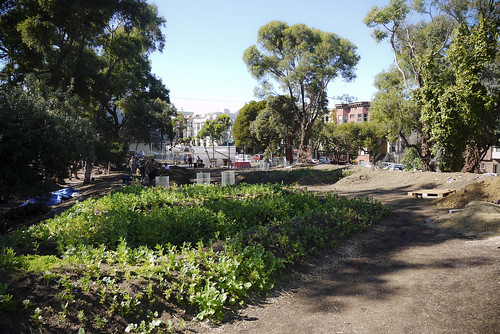 community gardens of hayes valley farm, SF
