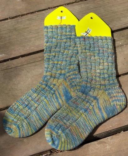 2010 Socks: March: Roger