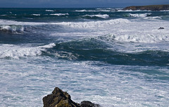 High wind on the coast  --  Mendocino coast #1