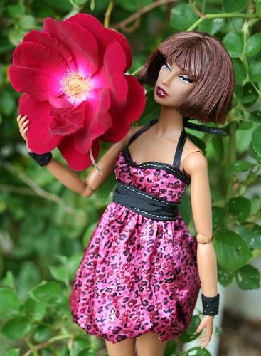 Wild Rosy Brilliance