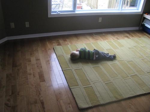 Testing the new carpet