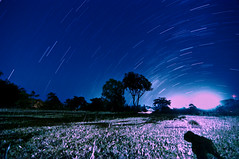 Star Trails (FAIL!)