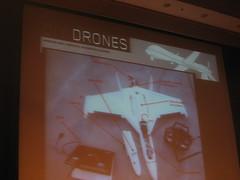 Naturbau + MIT + Drohnenbrut