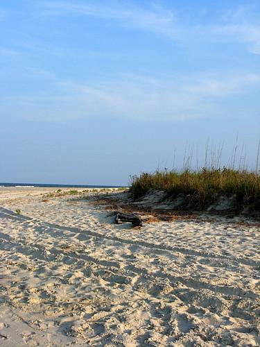 DSCN7629 Beach2