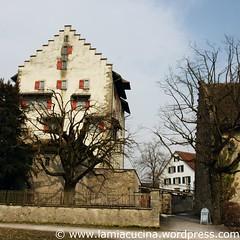 CH-8606 Greifensee 5_2010 03 10_5616