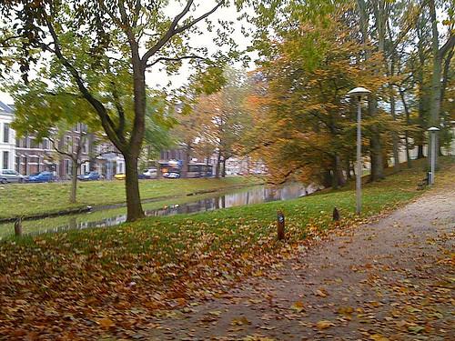 Autumn Swirl