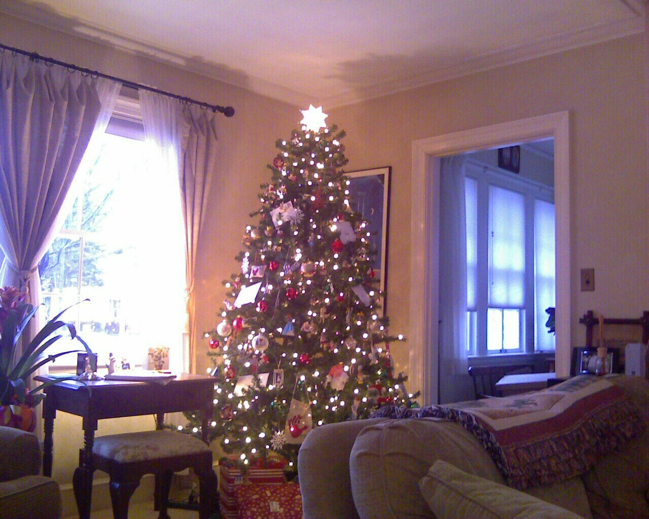 Galesburg Christmas Tree