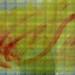 Sensxperiment 08.Gastrospecta. La Frutería (Lucena) 6