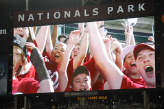 The Hillwood Middle school 8th grade class cheers for Teddy Roosevelt at Nationals Park