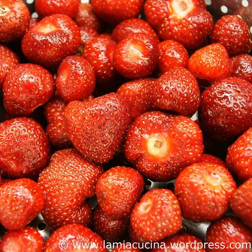 Erdbeersorbet 1_2010 06 11_7517