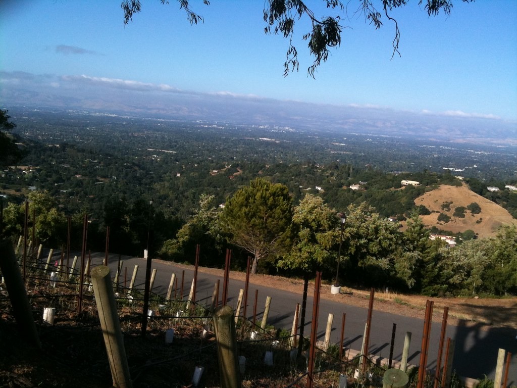Winery mountain view