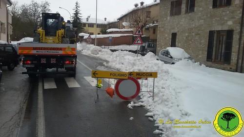 Terremoto Centro Italia 2017_045