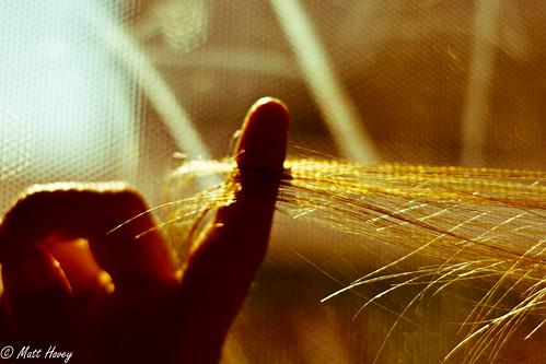 an extension of light by Matt Hovey
