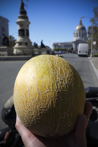 melon is a hybrid of cantaloupe and honeydew, found at civic center farmer's market