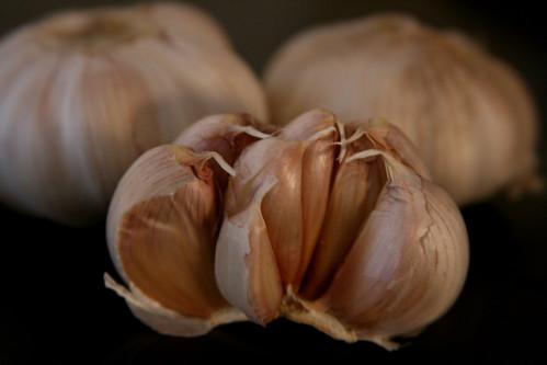 365-59 garlic macro