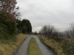 The path from Park Road W