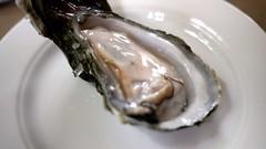 coast seafood - oysters by foodiebuddha