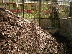 Frisch geschichteter Kompost 2