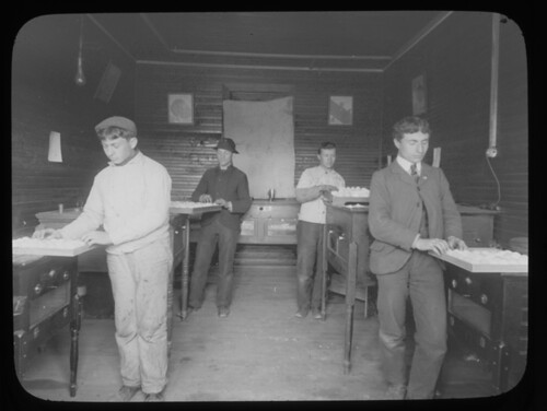 Students in the incubation room at the Woodbin...
