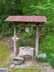 コテコテ井戸