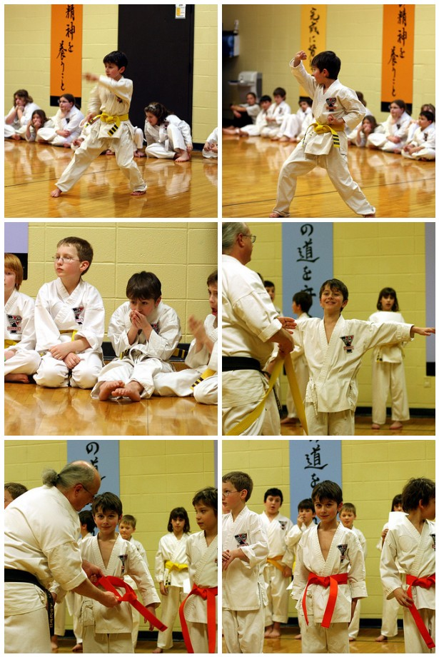 Orange Belt Testing Mosaic