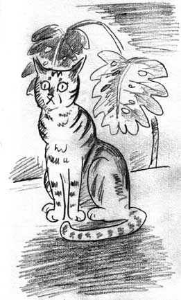 plantcat